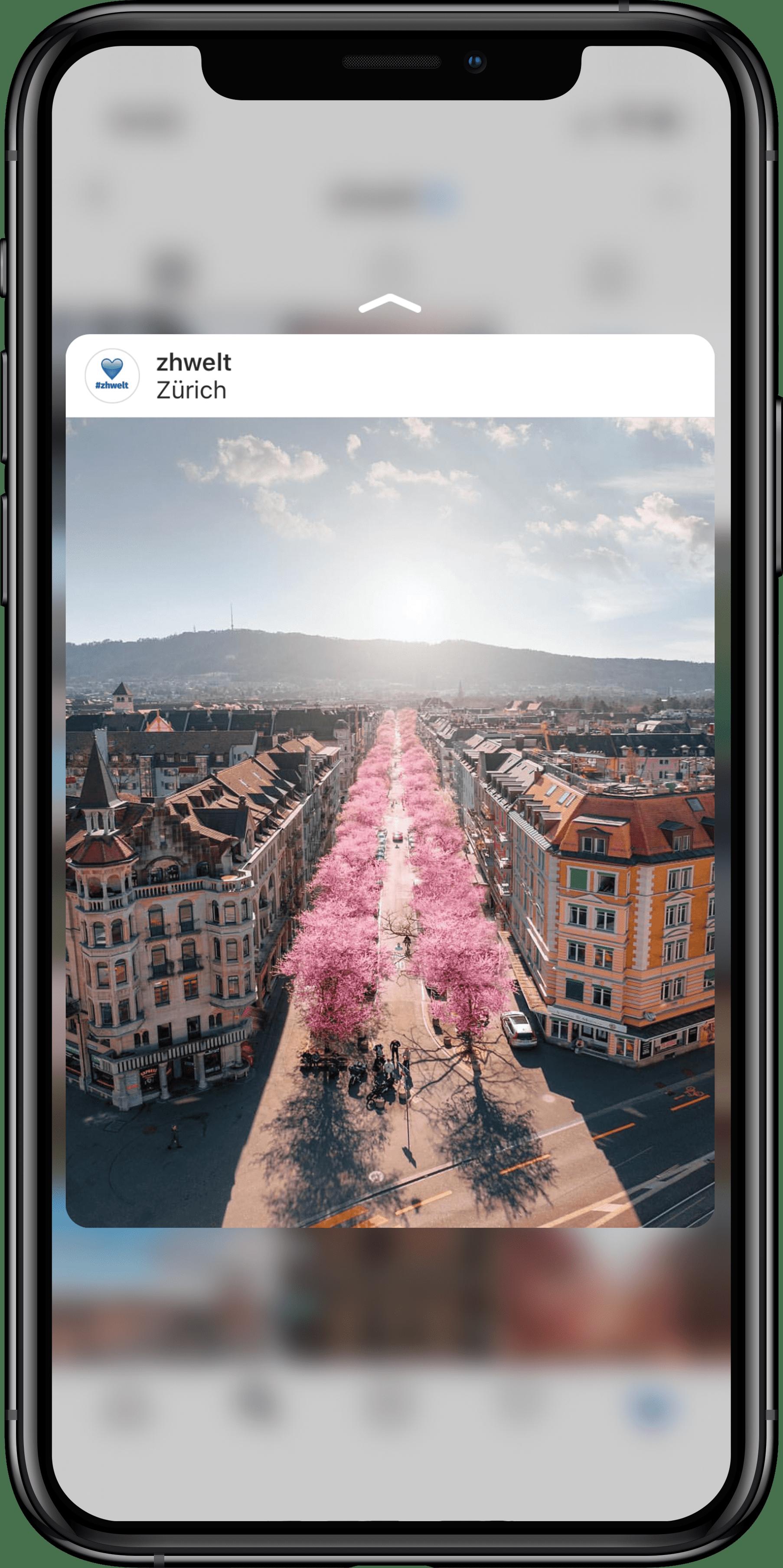 Das Bild zeigt den Instagram Chanel zhwelt